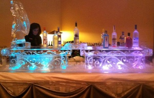 Ice Bar with Luge