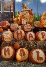 Pumpkin-Carving-Display-Haunted-House-and-Faces