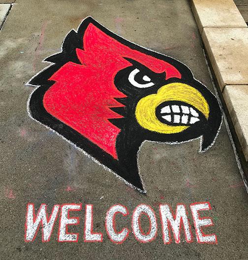 Chalk-Drawing-Cardinal-Logo