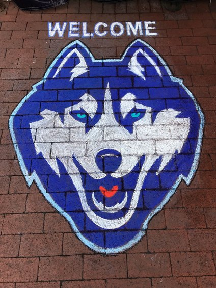 Chalk-Drawing-UCONN-Husky-Logo